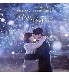 While_you_Were_Sleeping_ost_