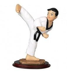 taekwondo-figurine-modellismo-gadget-cintura-nera