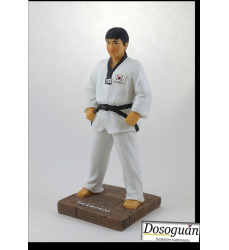 taekwondo-action-fgure-martial-arts-figurines