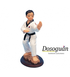 martial-arts-action-figure-in-stand-of-fighting-gift-idea-for-taekwondo-lover-gadgets
