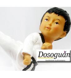 arti-marziali-regalo-idea-collezionismo-taekwondo-calcio-mosse-kukkiwon-italia