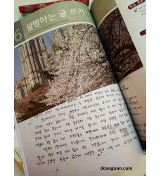 corso-di-coreano-scritto-manuale-scrittura-lingua-coreana-scrivere-un-saggio