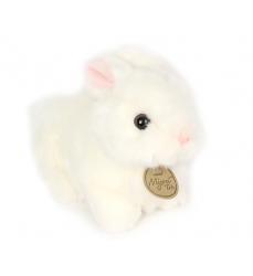 coniglio-bianco-morbido-occhioni-vendita-online-Dosoguan